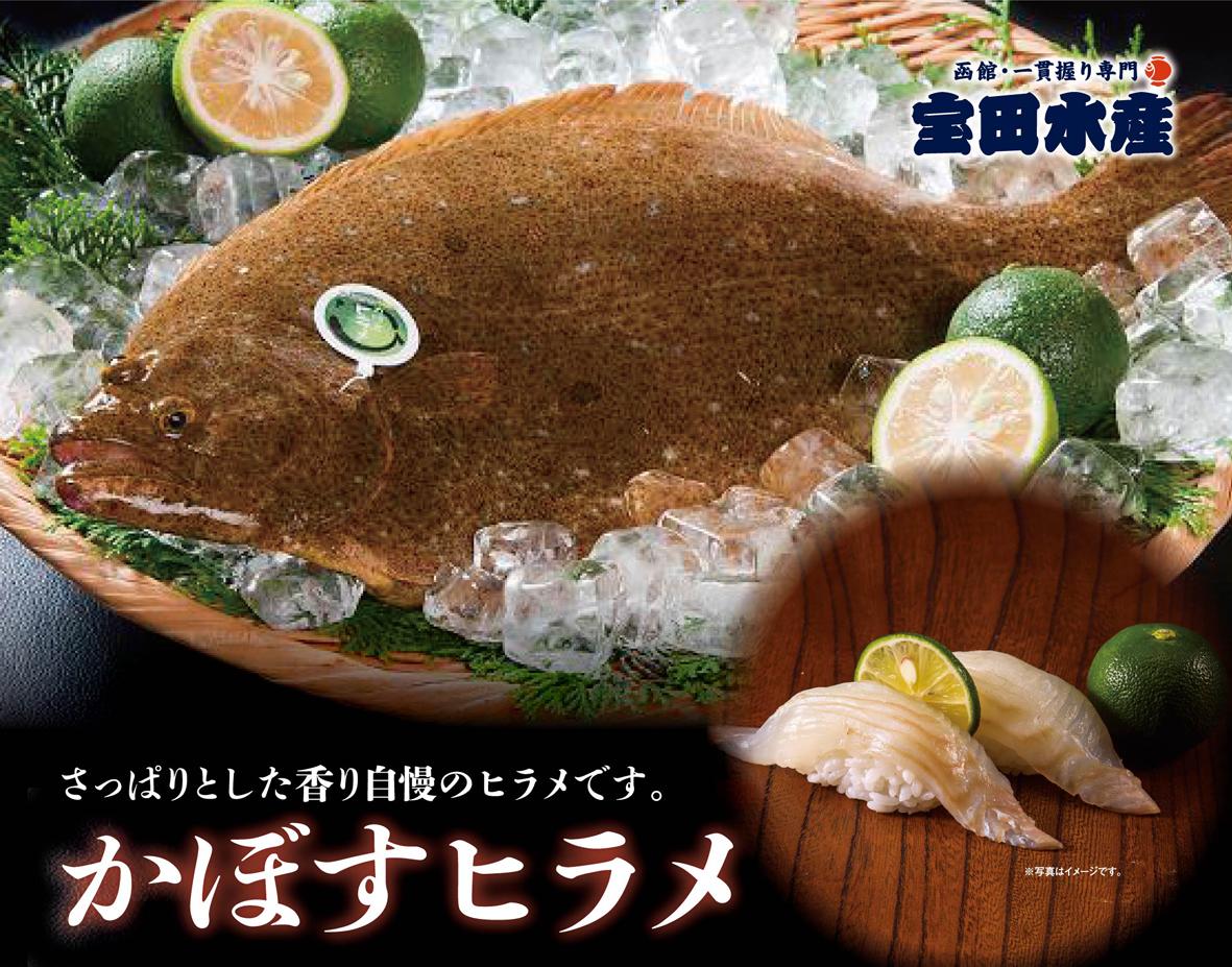 かぼすヒラメの特徴は、さっぱりとしてくさみが少なく美味しさは絶品です。 おいしさの秘密は、大分県特有のかぼす果汁を練りこんだオリジナルのエサにあります。 カボスの香り成分であるリモネンがヒラメに蓄積されます。 さっぱりとした上品は味を握りたての寿司で一貫からお楽しみくださいませ。