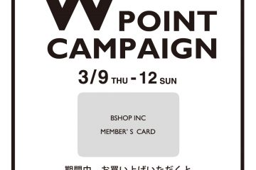 wpoint-640x640-mint