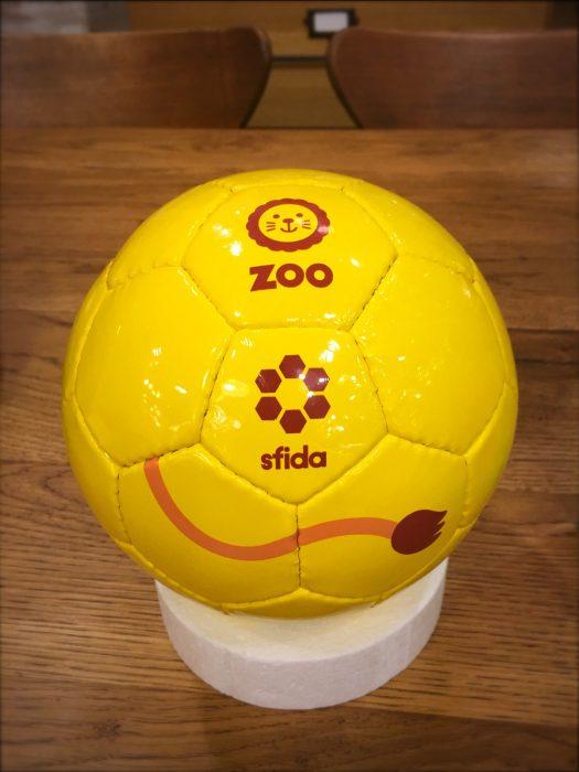 footballzoo1