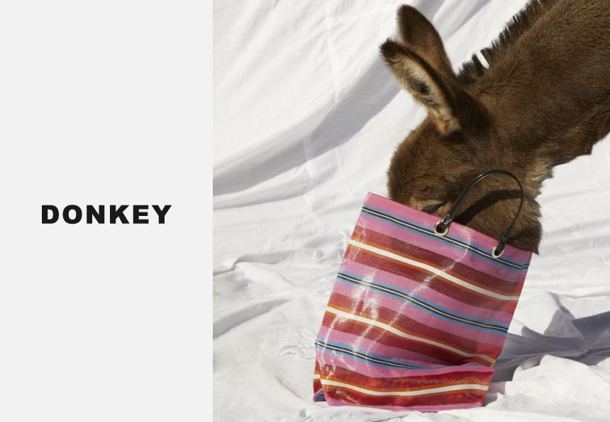 donkey-main[1]